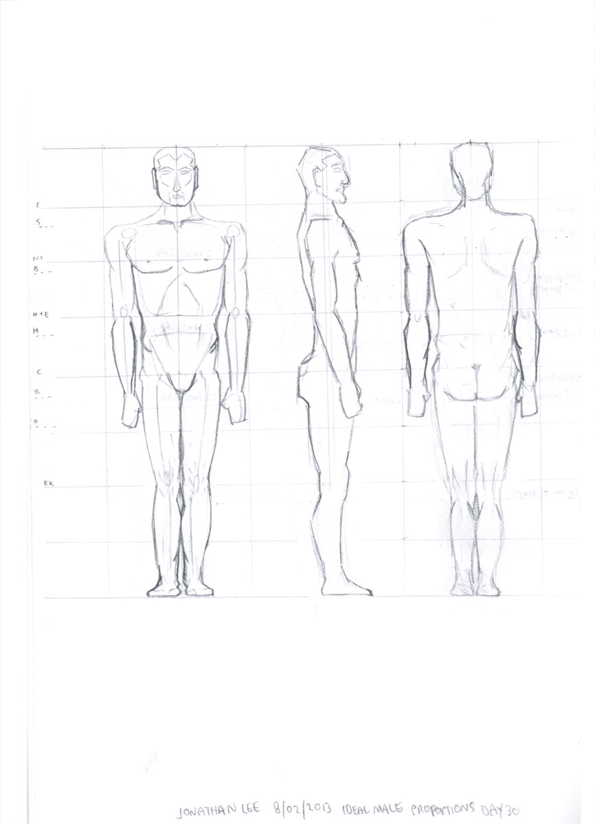 Ideal Man Body Proportions Related Keywords Ideal Man
